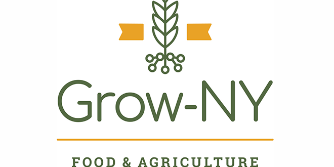 Calling all youth food system and technology entrepreneurs